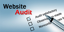 Web Audit